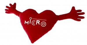 Vriend van Micro